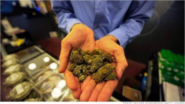 Marijuana e tasse: 600 milioni di euro non riscossi in Italia