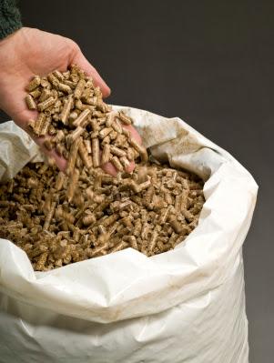 Quale Pellet scegliere: prezzi, offerte, qual'è il pellet migliore