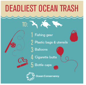 le plastiche più dannose per gli oceani