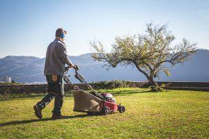 Aprire una Ditta da Giardiniere o Cooperativa per Giardinieri