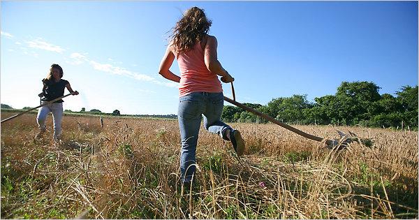I Giovani Investono in Agricoltura per Rilanciare l'Economia Italiana