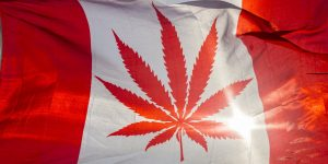 il Canada ha legalizzato la Marijuana Ricreativa: tutto quello che c'è da sapere