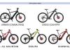 Bici Elettrica / Pedalata Assistita Migliore in Vendita, Qual'é?