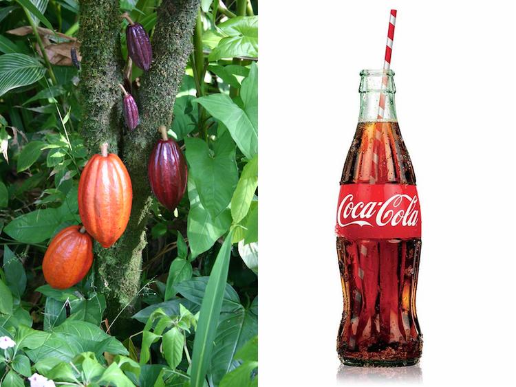 7 Strategie che hanno fatto di Coca Cola il brand più Famoso del Mondo