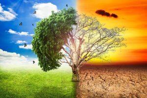 Azioni di energia rinnovabile e tecnologiche sopravvalutate in questo momento